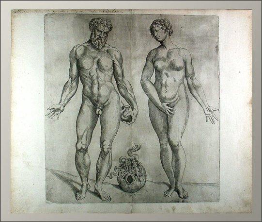 Humanis Corporis