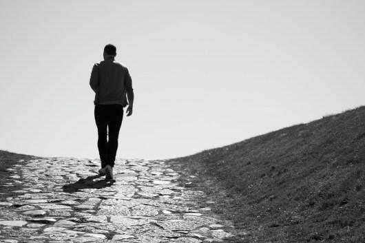 viajante-solitario